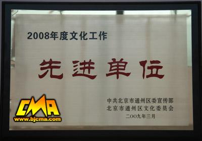 我院被授予2008年度文化工作先进单位称号