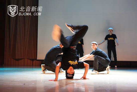 壁纸 动物 狗 狗狗 舞蹈 550_367